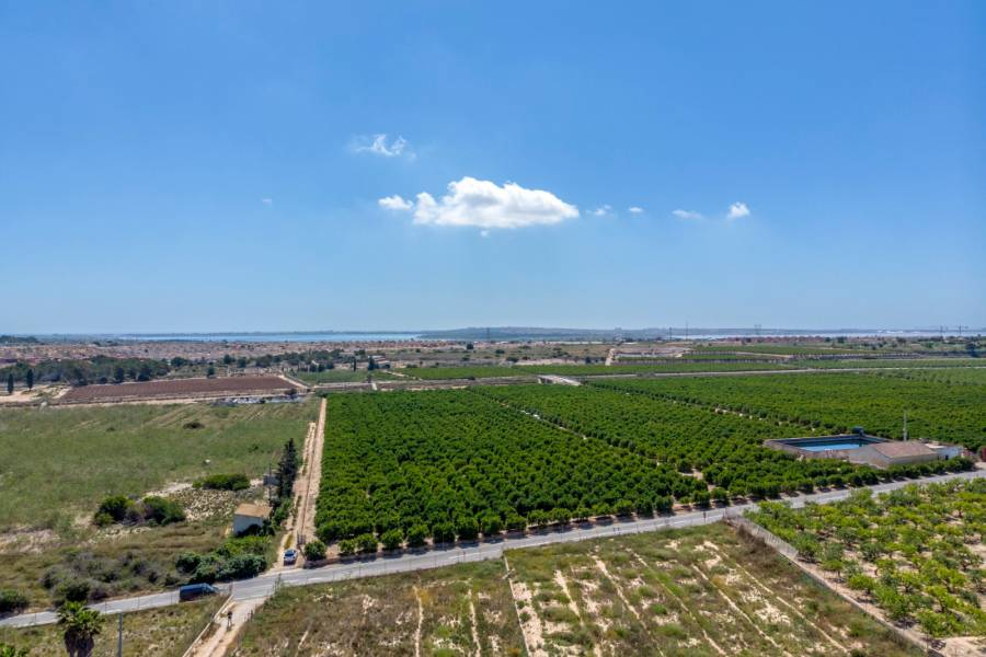 SPAIN COSTA BLANCA – PLOT IN ALGORFA OF 11.500M2 + PROJECT OF A LUXURY VILLA + CONSTRUCTION. EXCELLENT OPPORTUNITY TO HAVE THE HOUSE OF YOUR DREAMS!