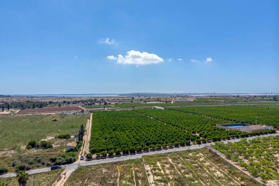 SPANIEN COSTA BLANCA – GRUNDSTÜCK IN ALGORFA MIT 11.500M2 + PROJEKT EINER LUXUSVILLA + BAU. AUSGEZEICHNETE GELEGENHEIT, DAS HAUS IHRER TRÄUME ZU HABEN!